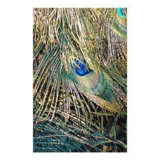 Papeterie Plumes rustiques de paon de couleur