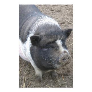 Papeterie Porc gonflé par pot