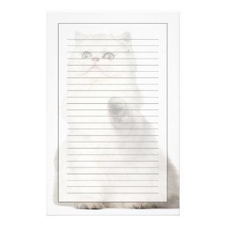Papeterie Séance de chat persan