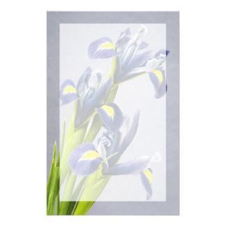 Papeterie Washington, Redmond, iris pourpres