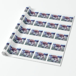 Papier Cadeau 2' ferme brillante de x6 scen le papier