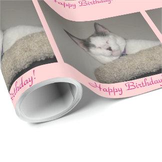 Papier Cadeau Anniversaire de petit somme de chat