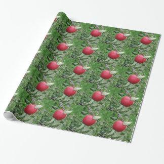 Papier Cadeau Apple et feuille