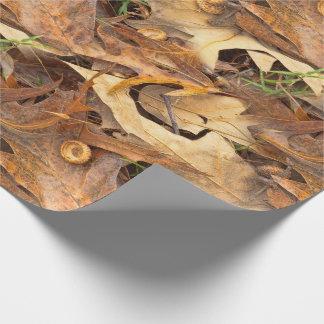 Papier Cadeau Camouflage abstrait de feuille d'automne de photo