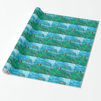 Papier Cadeau Canards sur l'eau