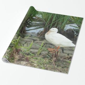 Papier Cadeau Canards uniques personnalisables à un lac