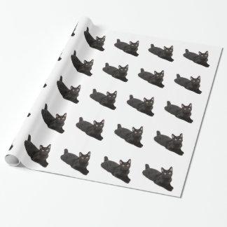 Papier Cadeau Chat noir