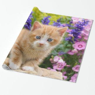Papier Cadeau Chaton mignon de chat de gingembre en portrait
