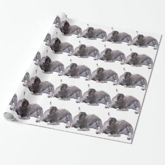 Papier Cadeau Chèvre