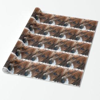 Papier Cadeau Chien doux de Basset Hound