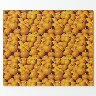 Papier Cadeau Citrouilles