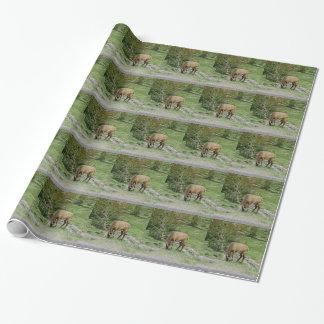Papier Cadeau Élans avec des andouillers de velours