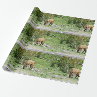 Papier Cadeau Élans avec des andouillers Yellowstone de velours