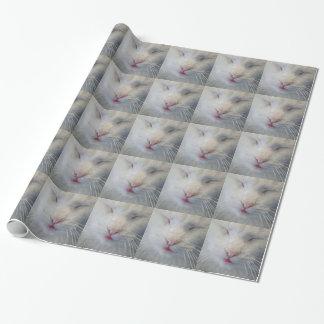Papier Cadeau Enveloppe de cadeau douce et blanche de chat