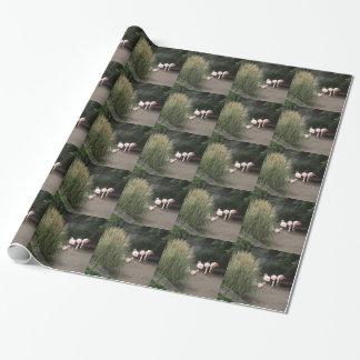 Papier Cadeau Flamants