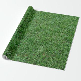 Papier Cadeau Herbe verte d'été, yard, photo de la pelouse 099