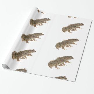 Papier Cadeau Image de grenouille pour le