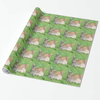 Papier Cadeau Kangourou