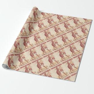 Papier Cadeau Kangourou de boxe