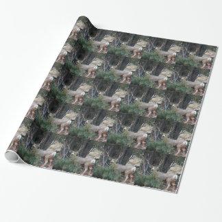 Papier Cadeau Mâle de dent de cerfs communs de mule
