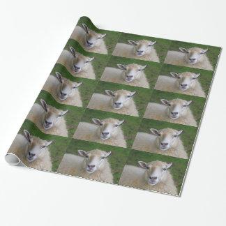 Papier Cadeau Moutons drôles