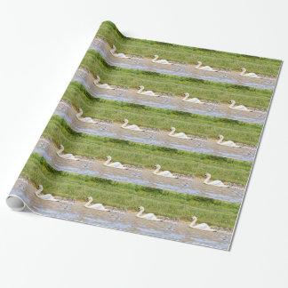 Papier Cadeau Natation blanche de cygne de mère en conformité
