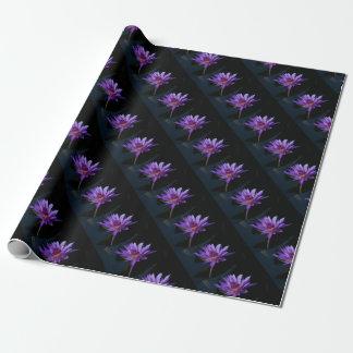Papier Cadeau Nénuphar pourpre Lotus