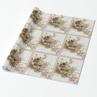 Papier Cadeau Oiseau avec le nid