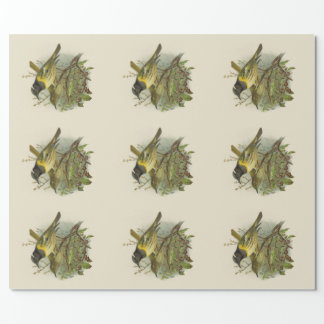 Papier Cadeau Oiseaux vintages de NZ de la Science - oiseaux de