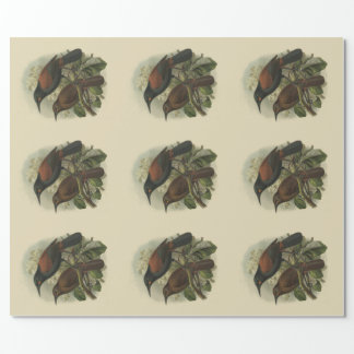 Papier Cadeau Oiseaux vintages Saddleback et Jack-oiseau de NZ