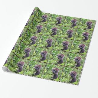 Papier Cadeau Papier d'emballage de gorille semi-transparent