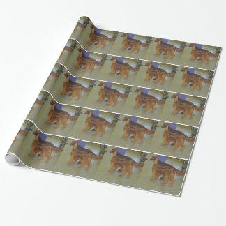 Papier Cadeau Papier d'emballage de poseur irlandais
