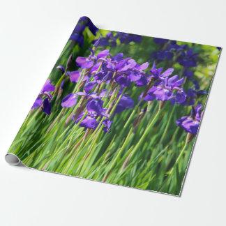 Papier Cadeau Papier d'emballage d'iris pourpre