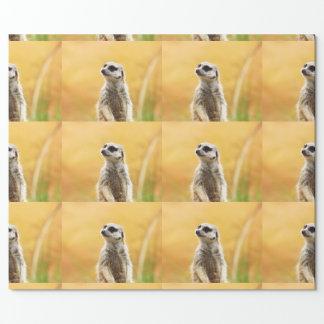 Papier Cadeau Papier d'emballage mignon de Meerkat
