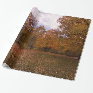 Papier Cadeau Paysage d'arbres d'automne