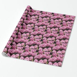 Papier Cadeau Photographie rose d'hortensias