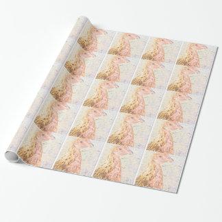 Papier Cadeau PIC chicken.png d'image