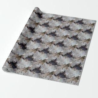 Papier Cadeau Scorpion de l'italicus d'Euscorpius d'espèces