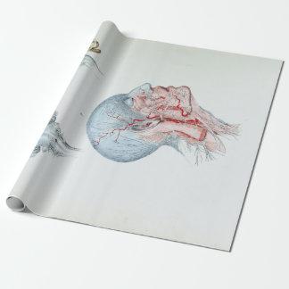 Papier Cadeau Tête humaine et yeux d'anatomie vintage