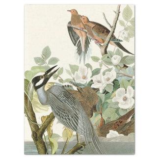 Papier de soie de soie de fleurs d'Audubon
