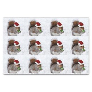 Papier de soie de soie d'écureuil de Noël