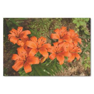 Papier de soie de soie orange de fleur
