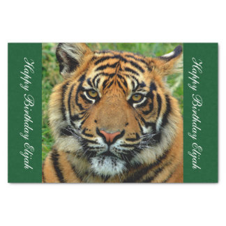 Papier de soie de soie personnalisé par tigre