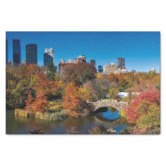 Papier Mousseline Central Park dans le feuillage New York d'automne