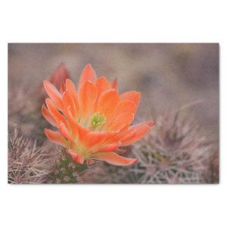 Papier Mousseline Fleurs dans l'orange