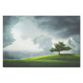 Papier Mousseline Orage dramatique d'été et paysage pittoresque
