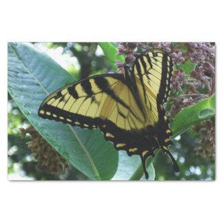 Papier Mousseline Papillon de machaon I sur le Milkweed chez