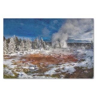 Papier Mousseline Parc national Wyoming de Yellowstone en hiver