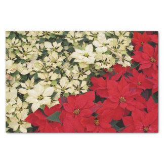Papier Mousseline Vacances blanches et rouges des poinsettias I