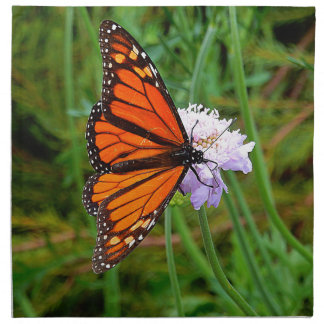 Papillon alimentant sur une fleur serviettes de table